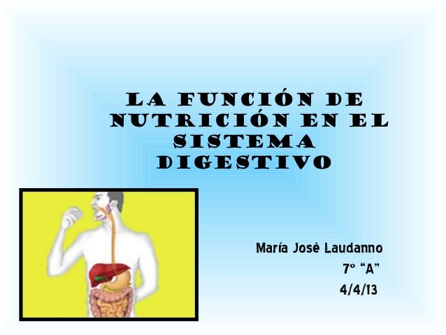 """La función denutrición en elSISTEMADIGESTIVOMaría José Laudanno7º """"A""""4/4/13"""