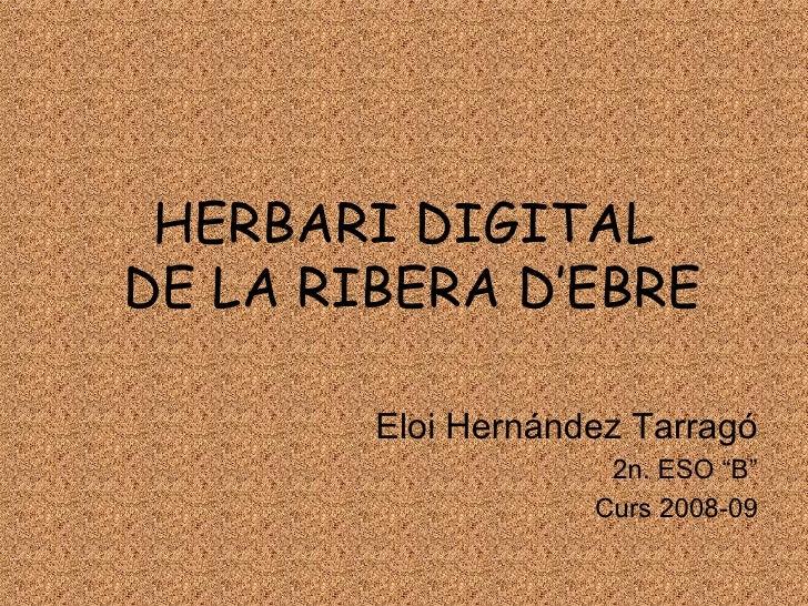 """HERBARI DIGITAL  DE LA RIBERA D'EBRE Eloi Hernández Tarragó 2n. ESO """"B"""" Curs 2008-09"""