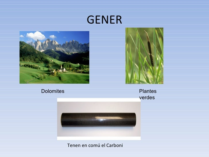 GENER Tenen en comú el Carboni Dolomites Plantes verdes