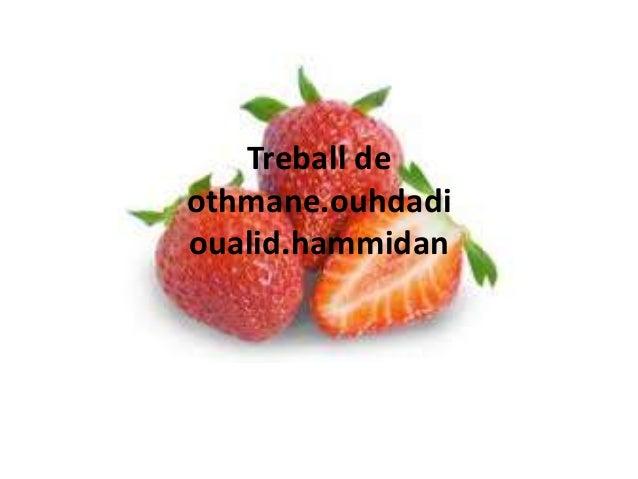 Treball deothmane.ouhdadioualid.hammidan