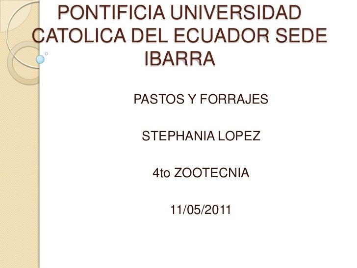 PONTIFICIA UNIVERSIDAD CATOLICA DEL ECUADOR SEDE IBARRA<br />PASTOS Y FORRAJES <br />STEPHANIA LOPEZ <br />4to ZOOTECNIA<b...