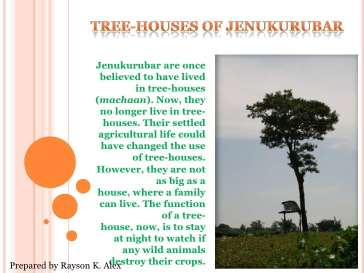 Tree-Houses of Jenukurubar<br />Jenukurubar are once believed to have lived in tree-houses (machaan). Now, they no longer ...