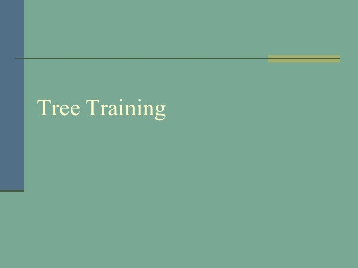 Tree Training