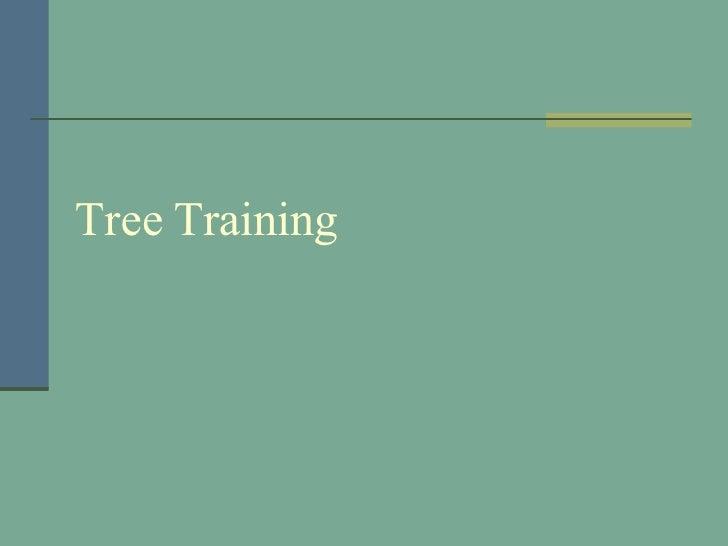 Tree Training