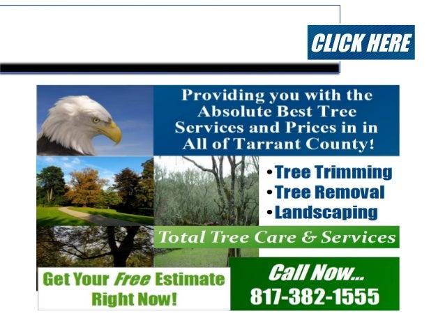 Tree Care Tarrant County