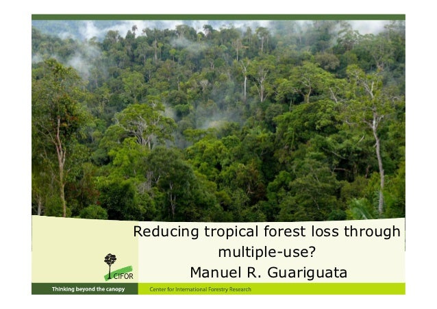 Reducing tropical forest loss through           multiple-use?       Manuel R. Guariguata