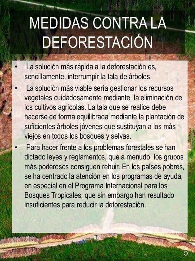 Resultado de imagen para medidas contra la deforestacion