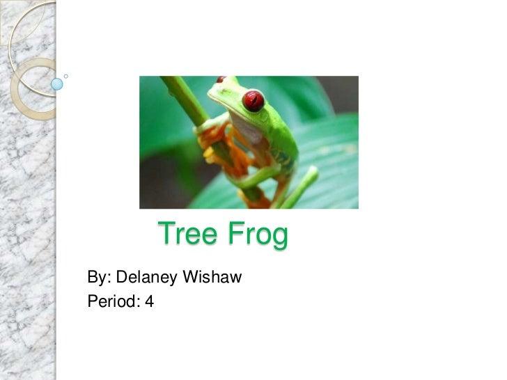 Tree FrogBy: Delaney WishawPeriod: 4