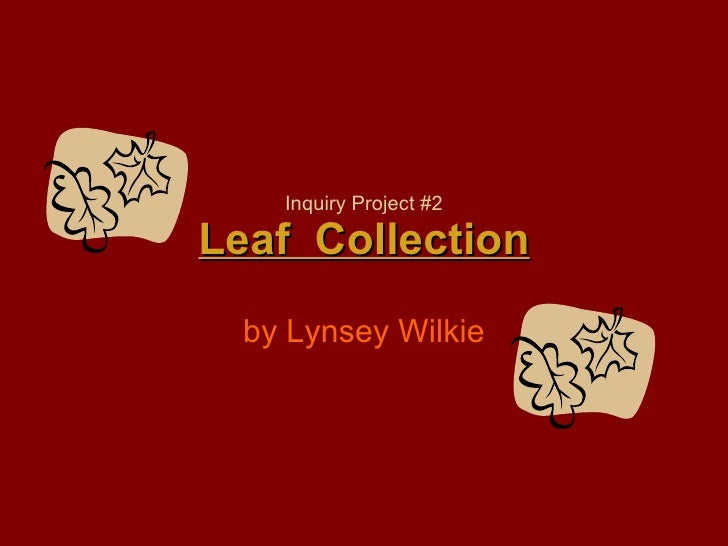 Inquiry Project #2 Leaf  Collection by Lynsey Wilkie