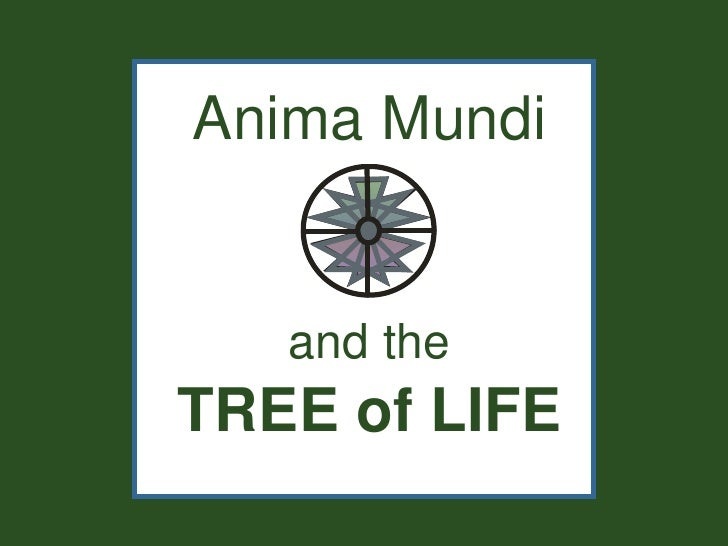 Anima Mundi   and theTREE of LIFE