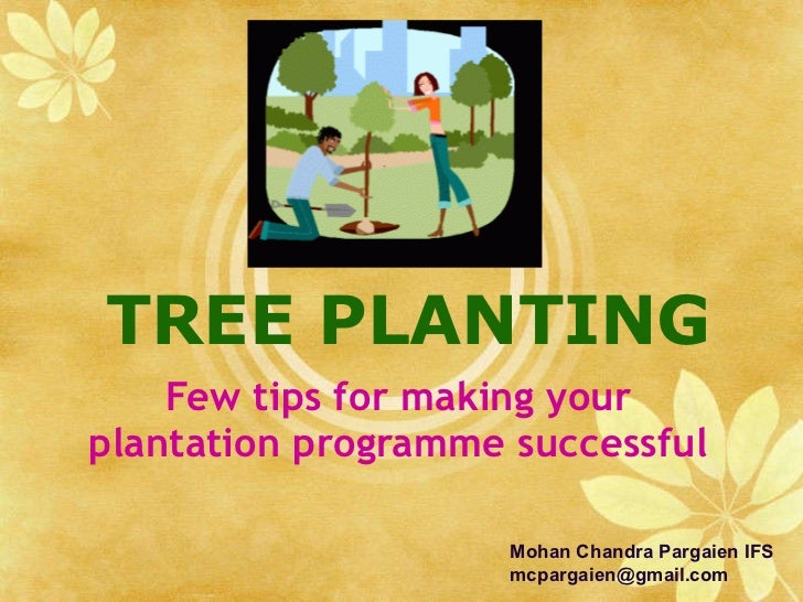 TREE PLANTING Few tips for making your plantation programme successful Mohan Chandra Pargaien IFS [email_address]