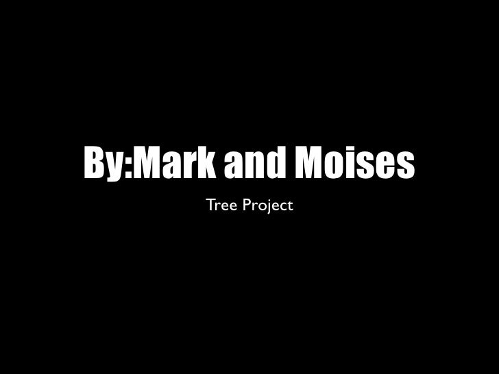By:Mark and Moises       Tree Project