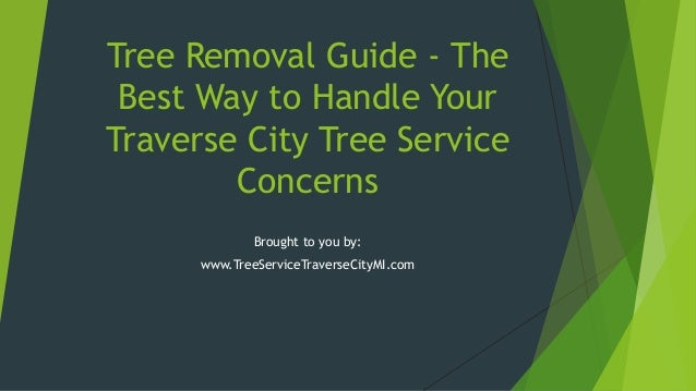 Tree Removal Guide - The Best Way to Handle Your Traverse City Tree Service Concerns Brought to you by: www.TreeServiceTra...