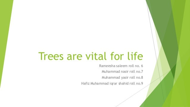 Trees are vital for life