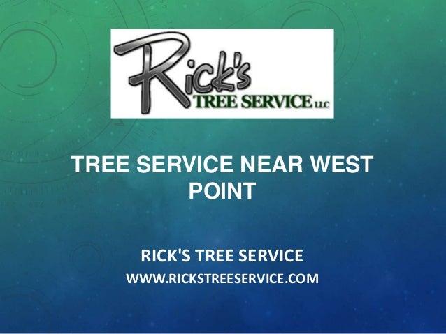 Tree Service near West Point
