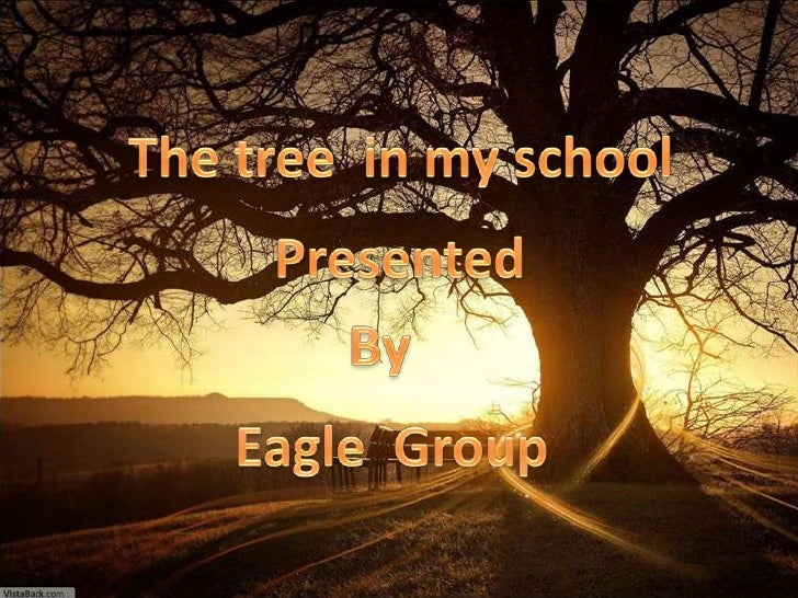 The tree  in my school<br />Presented<br />By<br />Eagle  Group<br />