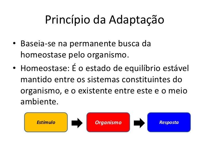 Princípio da adaptação e os tipos de estímulos