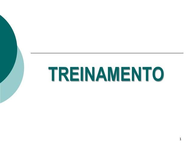 TREINAMENTO  1