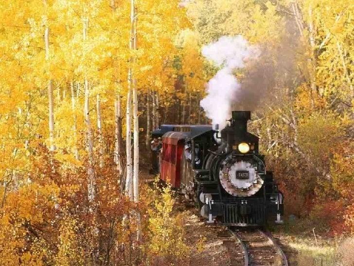 Trenes del mundo