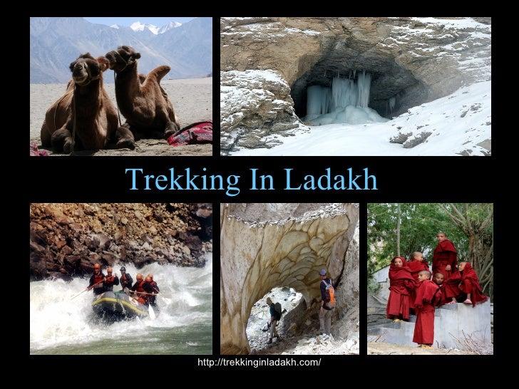 A Glimpse of Ladakh Trekking