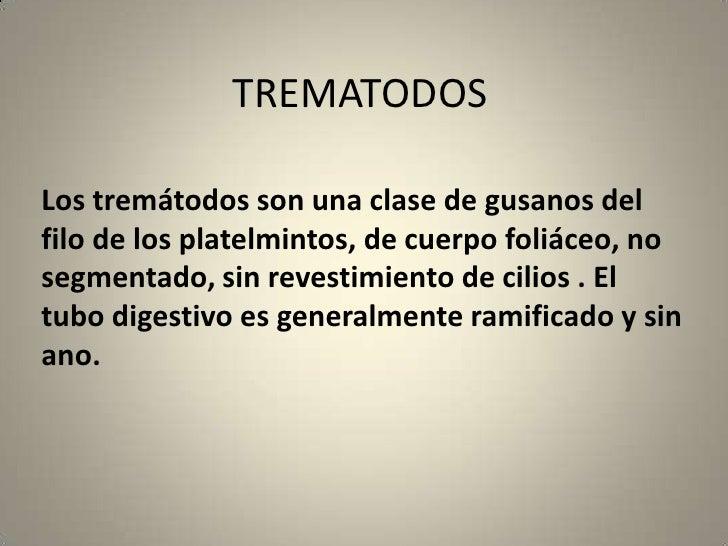 TREMATODOS<br />Los tremátodos son una clase de gusanos del filo de los platelmintos, de cuerpo foliáceo, no segmentado, s...