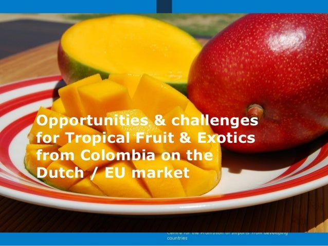 Opportunities & challenges for Tropical Fruit & Exotics from Colombia on the Dutch / EU market