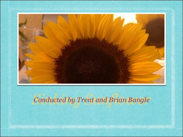 Sinking SunflowerConducted by Trent and Brian Bangle