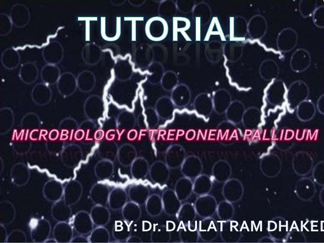 Treponema pallidum tutorial