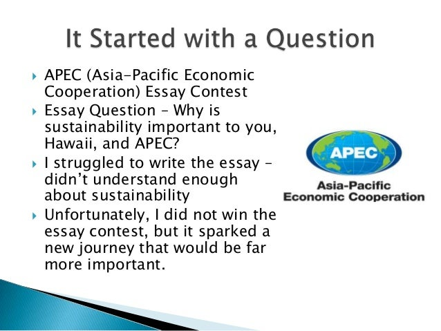 sustainability essay questions