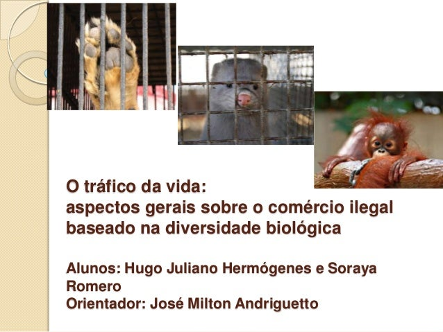 O tráfico da vida: aspectos gerais sobre o comércio ilegal baseado na diversidade biológica Alunos: Hugo Juliano Hermógene...