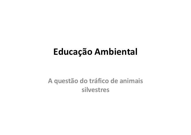 Tráfico de animais - apresentação
