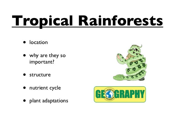 Tropical Rainforests •   location •   why are they so     important? •   structure •   nutrient cycle •   plant adaptations