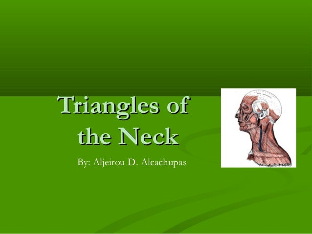 Triangles ofTriangles of the Neckthe Neck By: Aljeirou D. Alcachupas