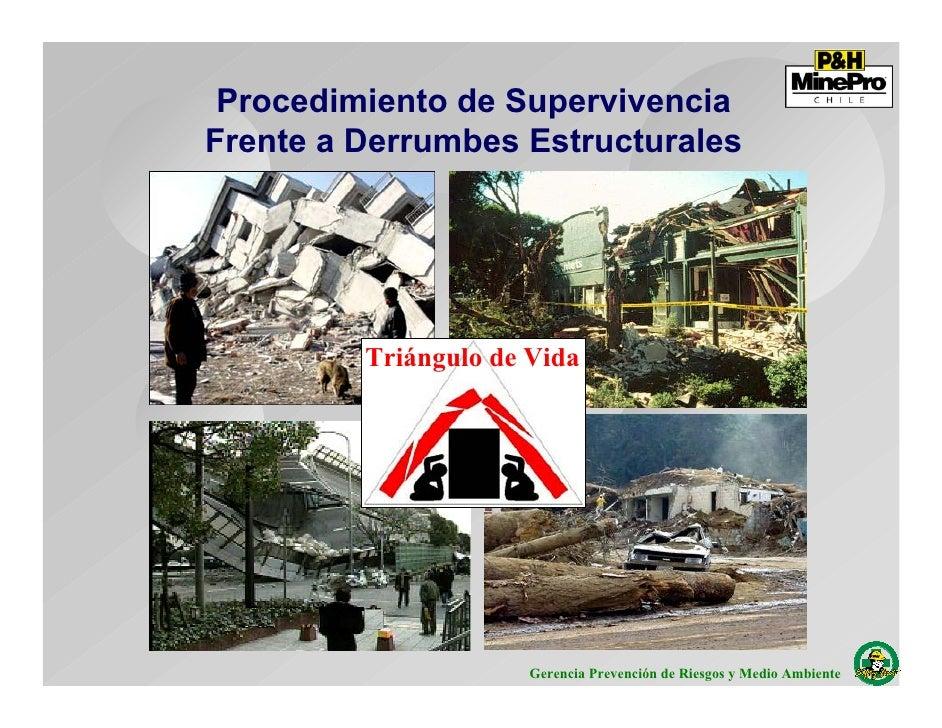 Procedimiento de Supervivencia Frente a Derrumbes Estructurales              Triángulo de Vida                           G...