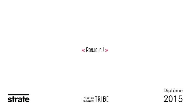 « Bonjour ! » TRIBE Diplôme 2015Nicolas Fallourd