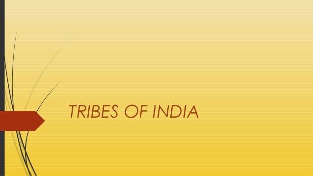 Tri bes in india