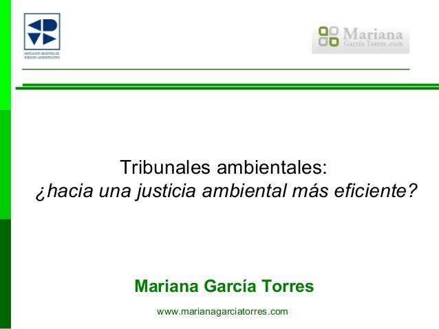 Tribunales ambientales:¿hacia una justicia ambiental más eficiente?           Mariana García Torres              www.maria...