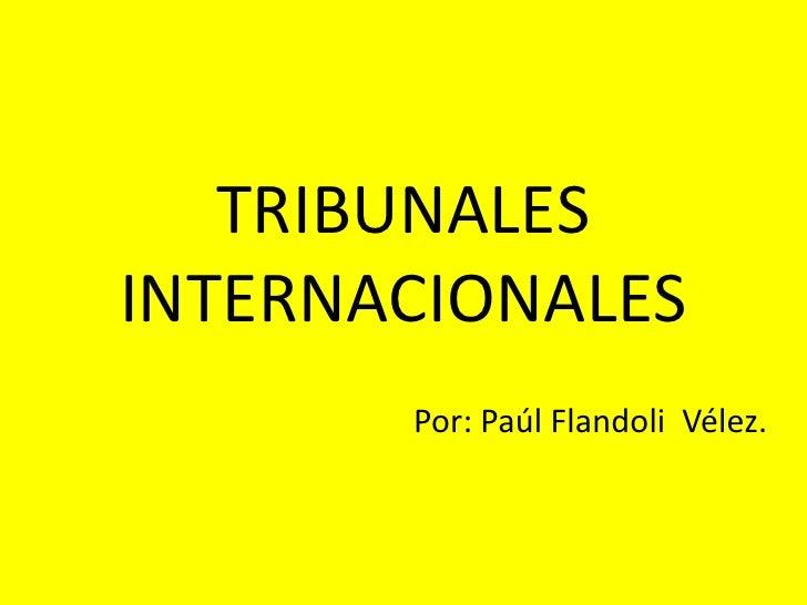 TRIBUNALES INTERNACIONALES<br />Por: Paúl Flandoli  Vélez.<br />