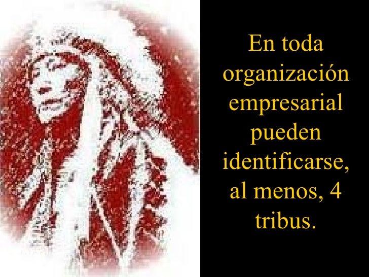 En toda organización empresarial pueden identificarse, al menos, 4 tribus.