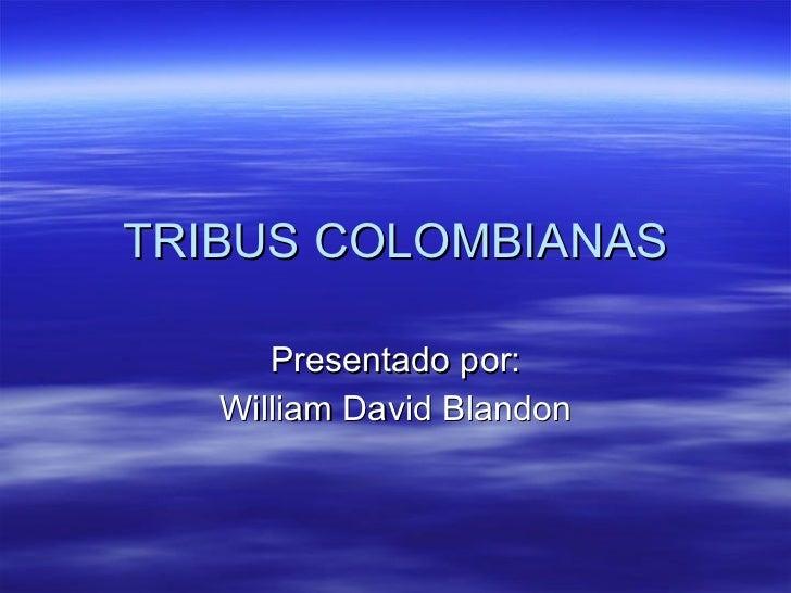 TRIBUS COLOMBIANAS Presentado por: William David Blandon
