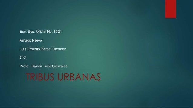 Esc. Sec. Oficial No. 1021 Amado Nervo Luis Ernesto Bernal Ramírez 2°C Profe.: Randú Trejo Gonzales TRIBUS URBANAS