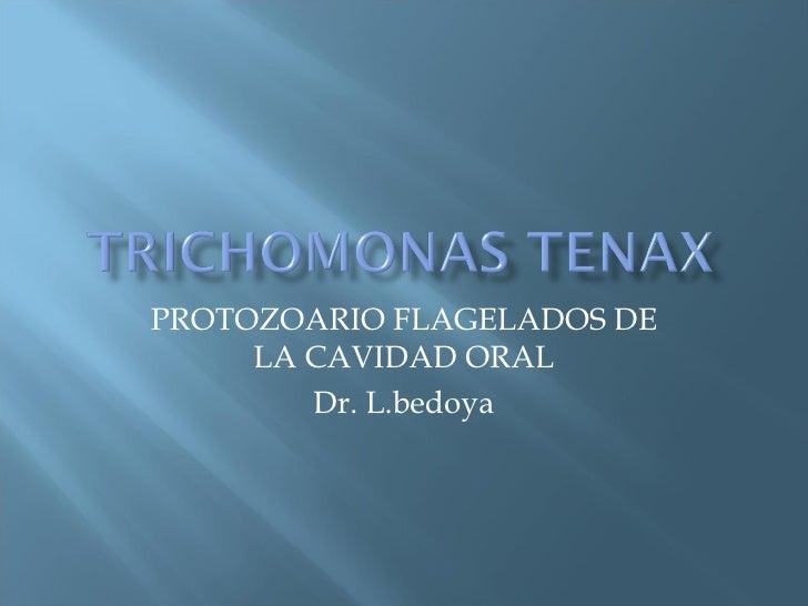 PROTOZOARIO FLAGELADOS DE LA CAVIDAD ORAL Dr. L.bedoya
