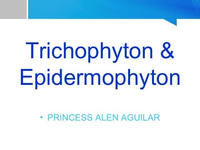 Trichophyton & Epidermophyton • PRINCESS ALEN AGUILAR