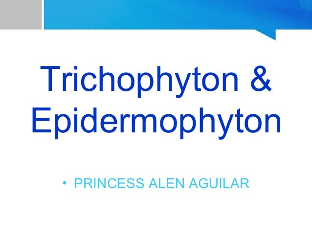 Trichophyton and Epidermophyton