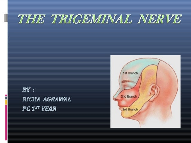 Contents:1. Introduction. 2. Structure of a nerve. 3. List of cranial nerves and its classification. 4. Embryology of trig...