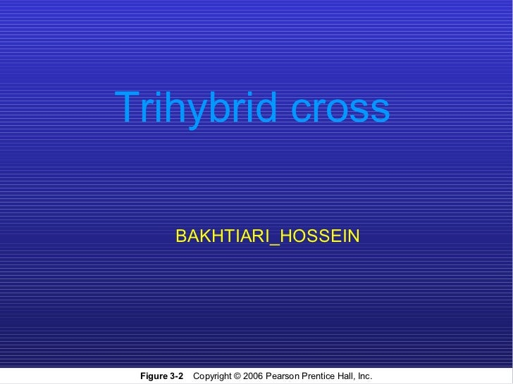 Trihybrid cross         BAKHTIARI_HOSSEIN Figure 3-2   Copyright © 2006 Pearson Prentice Hall, Inc.