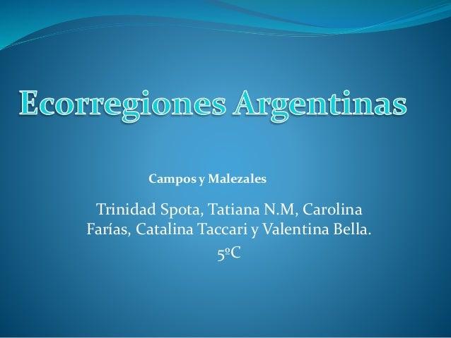 Trinidad Spota, Tatiana N.M, Carolina Farías, Catalina Taccari y Valentina Bella. 5ºC Campos y Malezales
