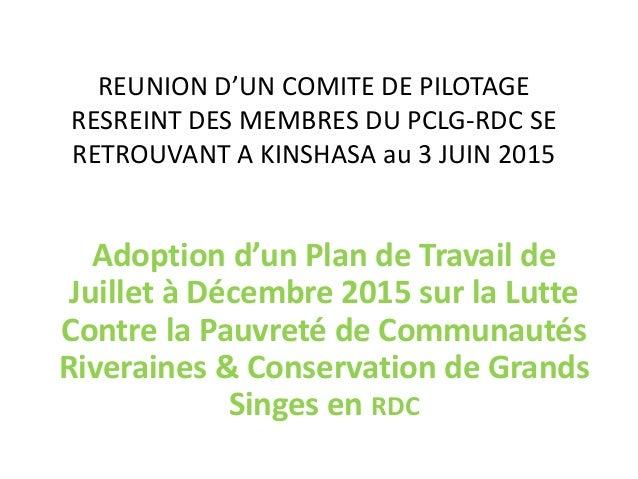 REUNION D'UN COMITE DE PILOTAGE RESREINT DES MEMBRES DU PCLG-RDC SE RETROUVANT A KINSHASA au 3 JUIN 2015 Adoption d'un Pla...