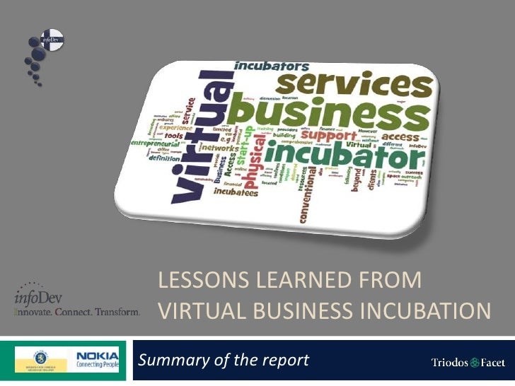 LESSONS LEARNED FROM  VIRTUAL BUSINESS INCUBATIONSummary of the report
