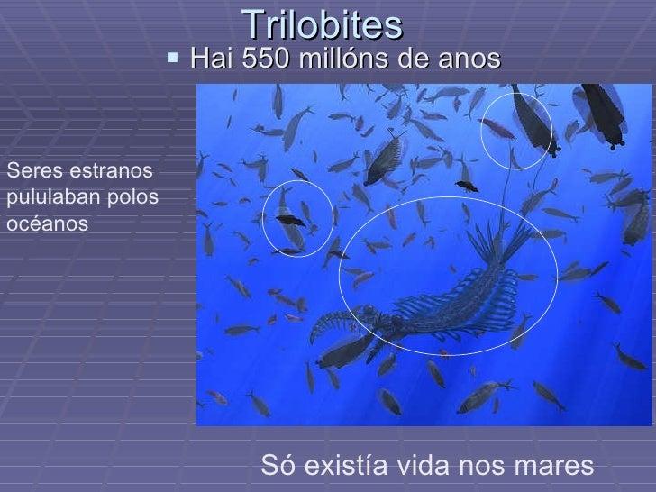Trilobites  <ul><li>Hai 550 millóns de anos </li></ul>Só existía vida nos mares  Seres estranos pululaban polos océanos